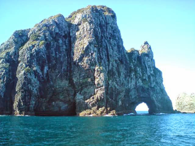 The Hole in the Rock, Bay of Islands, New Zealand - The Wiringi's Family Travel Blog