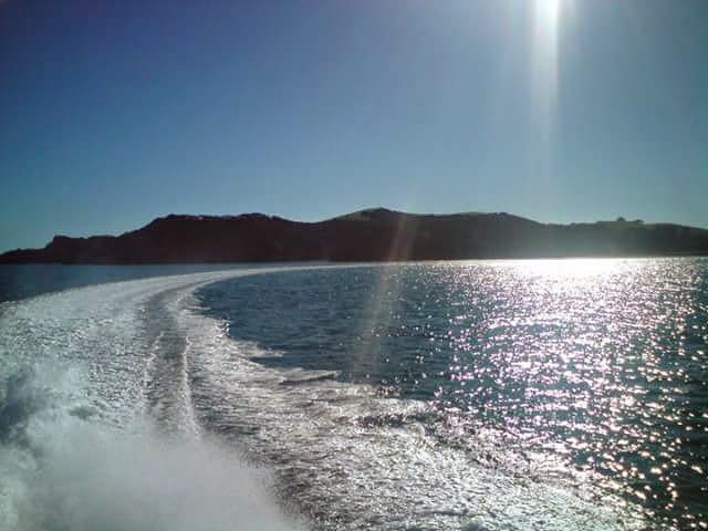 Cruising on Explore NZ dolphin watching boat, Bay of Islands, New Zealand - The Wiringi's Family Travel Blog
