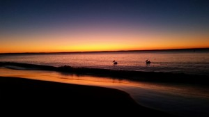 Sunrise, Huskisson Beach, NSW, Australia - The Wiringi's Family Travel Blog